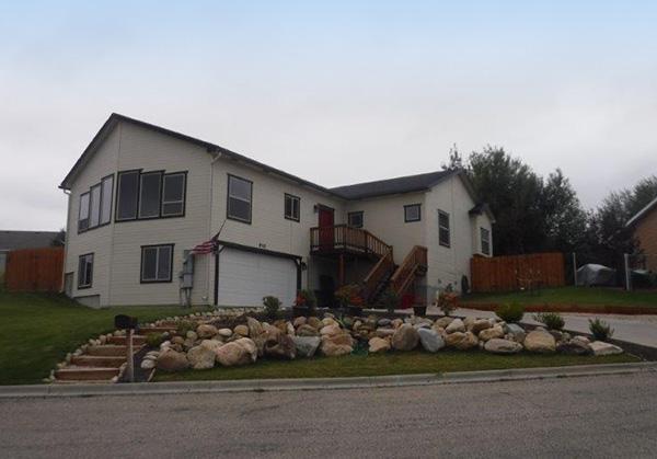 Buffalo-properties