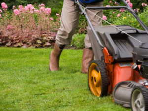mowing-the-lawn-